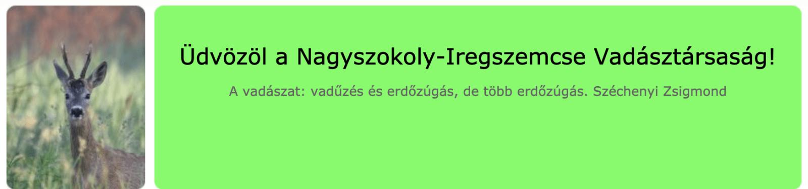 Nagyszokoly-Iregszemcse VT
