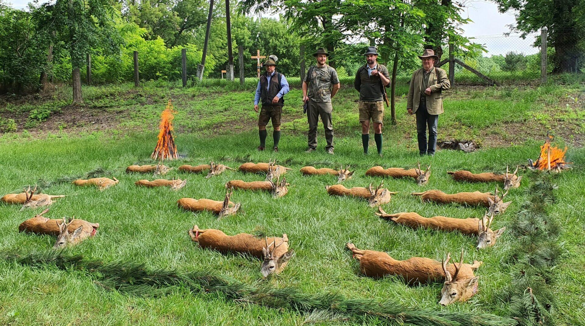 Őzbak vadászat, Tápiószentmárton mellett