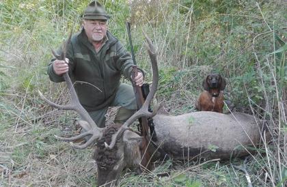 Gímszarvas vadászat