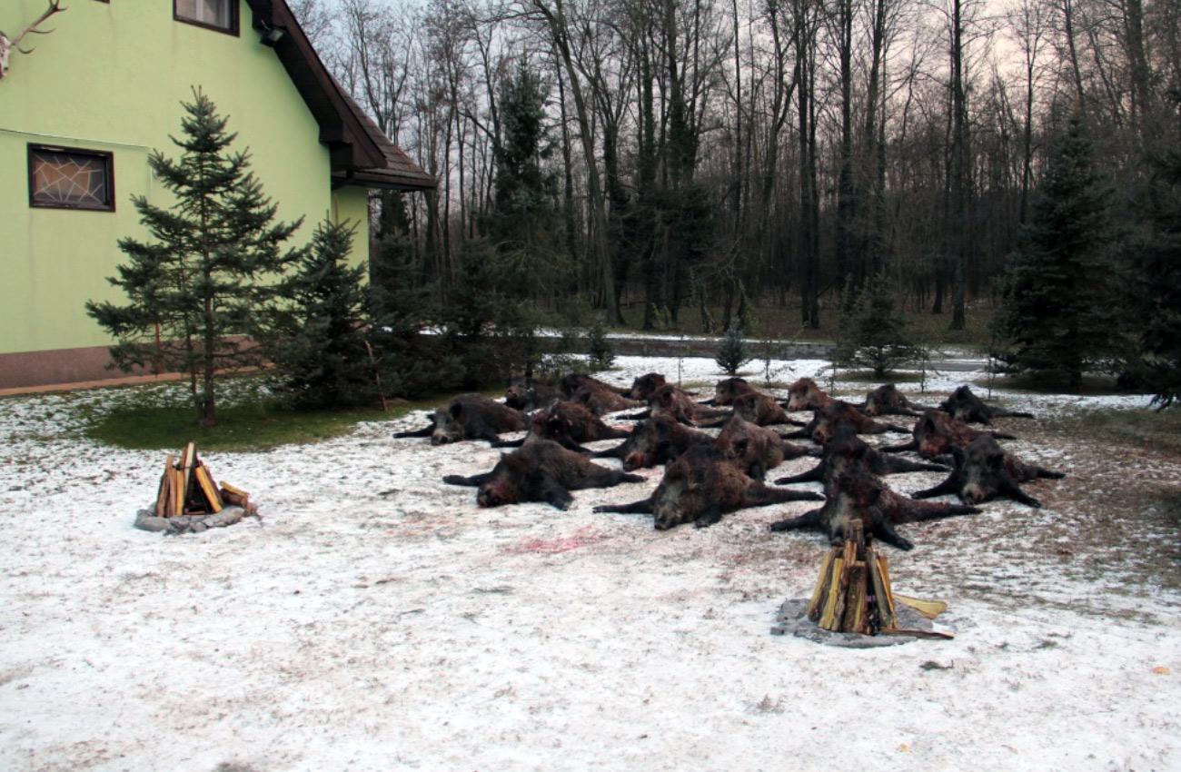 """Kutas és Vidéke """"Kossuth"""" Vadásztársaság"""