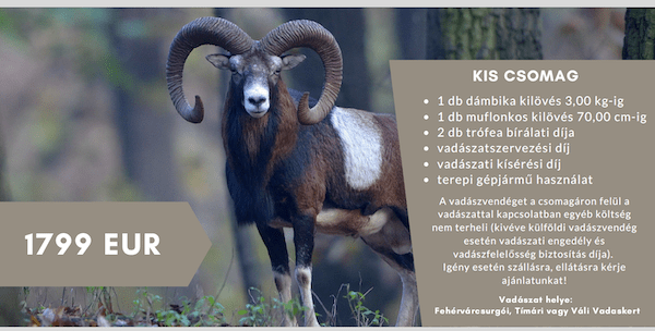 Dámbika és muflonkos – kedvezményes KIS csomag, 100% kilövési garanciával