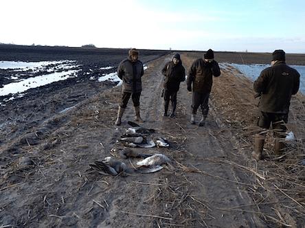 Vadliba vadászat a Solt környéki szikes és halas tavaknál