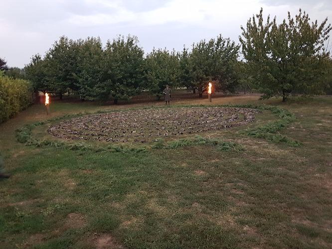 Réce- és fácánvadászat Nyíregyháza közelében – nevelt récékkel, fácánokkal