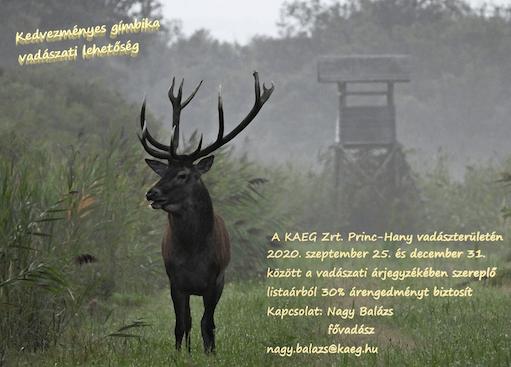 KAEG Zrt. State Forestry - Hungary